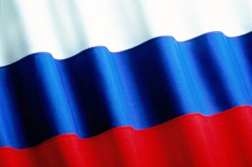 http://mou-korsakovo1.ippk.ru/images/flagg.jpg